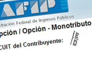 monotributo-emita-facturas-aporte-jubilacion-y-obra-social-3897-MLA4873392372_082013-O (1)
