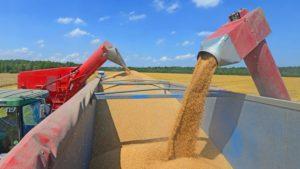 transporte-de-granos-y-cereales-0011680914